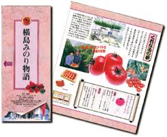 横島町勢要覧(平成11年3月発行)の表紙画像